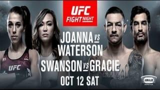 UFC FN 161