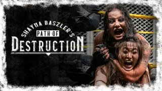 WWE The Best Of Shayna Baszlers Path of Destruction 2020