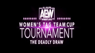 AEW Womens Tag Team Cup Tournament Night 3